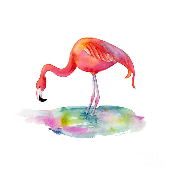 Flamingos Wall Art - Painting - Flamingo Dip by Amy Kirkpatrick