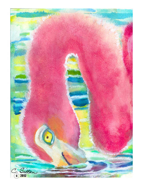 Painting - Flamingo Eating by C Sitton
