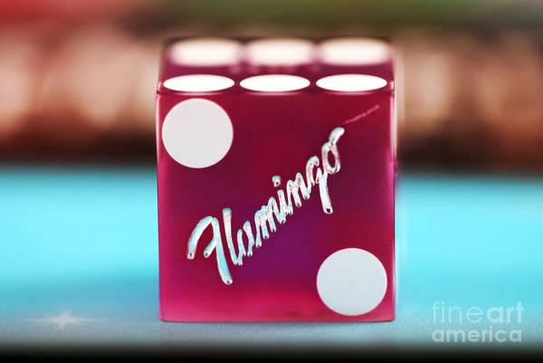 Photograph - Flamingo Dice by John Rizzuto