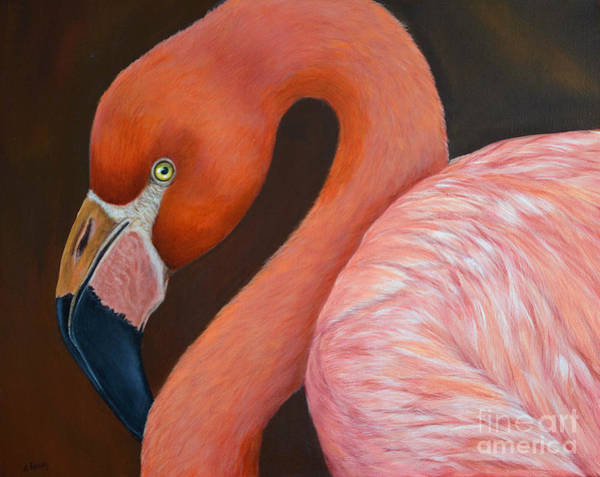 Painting - Flamingo Pretty In Pink by Nancy Lauby