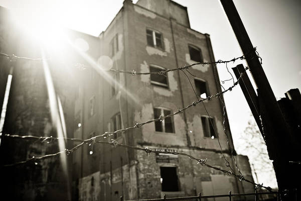 Photograph - Flare Behind The Wire by Melinda Ledsome