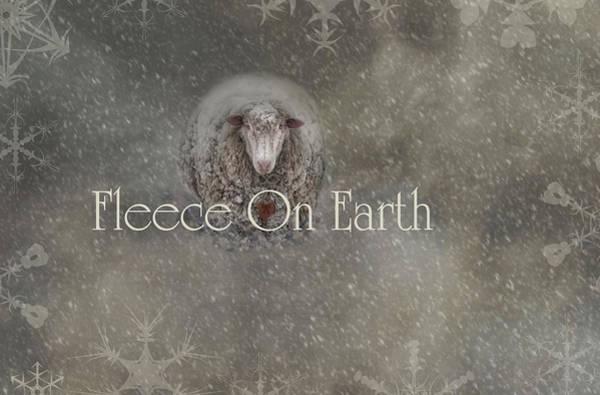 Photograph - Fleece On Earth by Robin-Lee Vieira