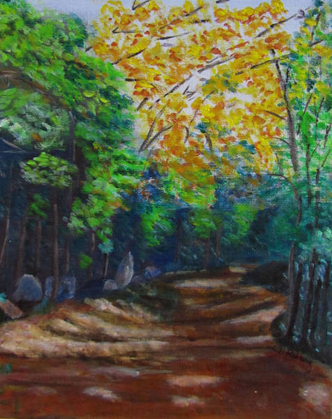 Painting - Fletcher Cascade Trail by Linda Feinberg