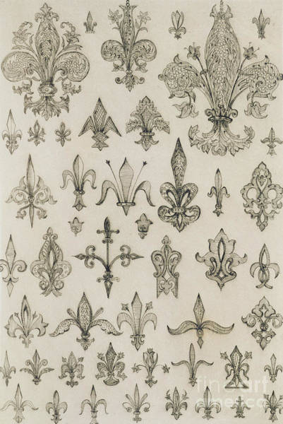 Floral Drawing - Fleur De Lys Designs From Every Age And From All Around The World by Jean Francois Albanis de Beaumont