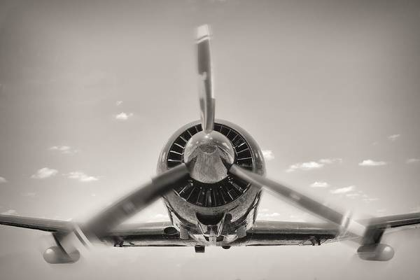 Photograph - Flight In Black And White by Rudy Umans