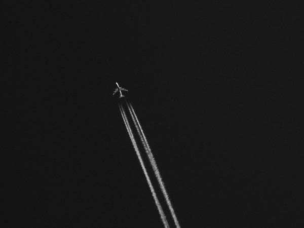 Photograph - Flight Over by Tarey Potter