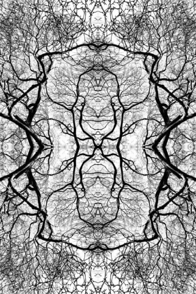 Tree No. 5 Art Print