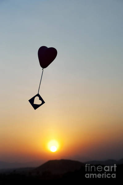 Joyous Photograph - Floating Hearts by Tim Gainey