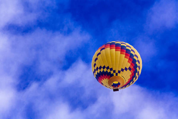 Photograph - Floating On Air by Teri Virbickis