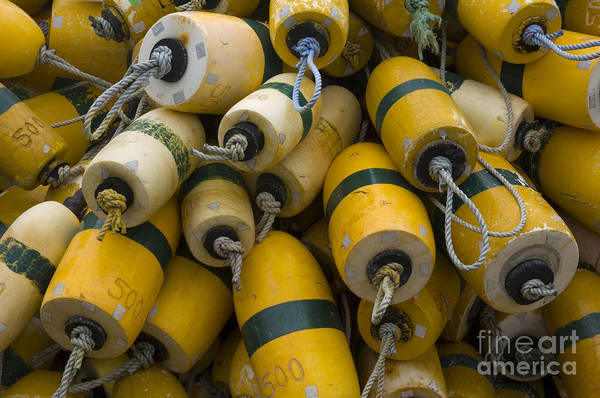 Crabbing Photograph - Floats Used In Crab Fishing by John Shaw
