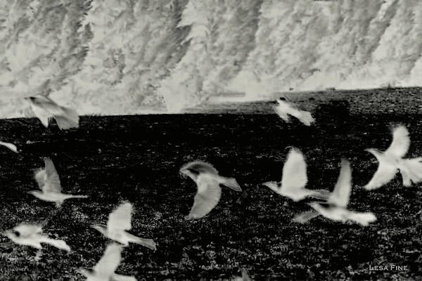 Photograph - Flock In Infrared by Lesa Fine