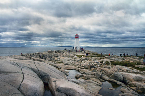 Peggys Cove Photograph - Flocking To Peggy by Betsy Knapp