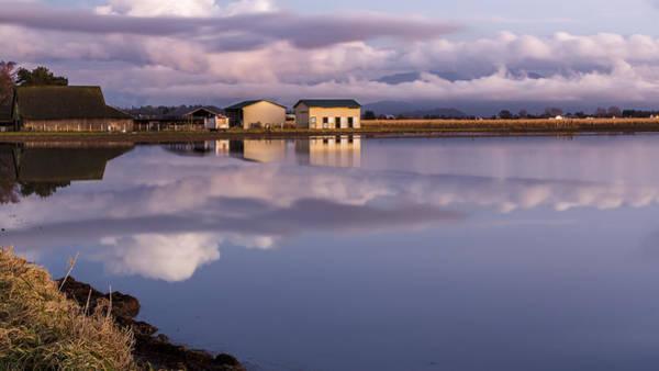Wall Art - Photograph - Flood On The Farm by Tony Locke