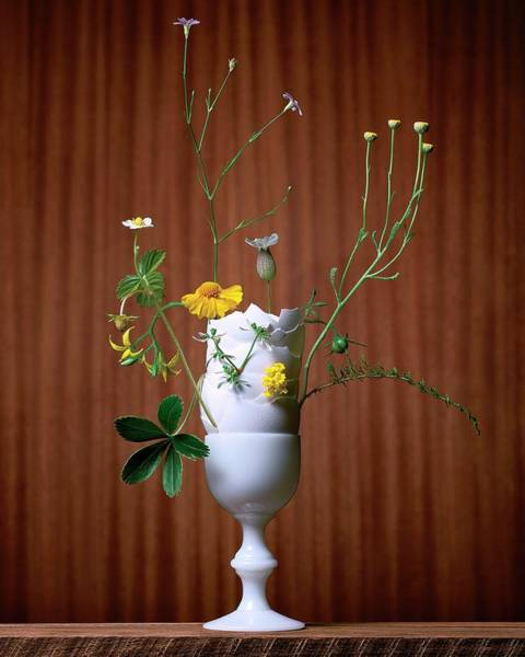 Vase Of Flowers Photograph - Floral Arrangement By Eve Suter by Jonathan Kantor