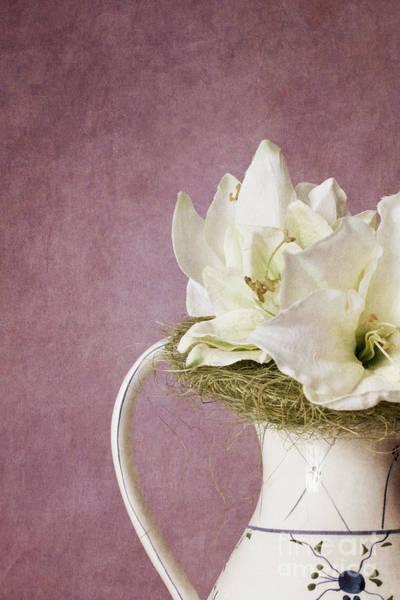 Photograph - Floral Art by David Lichtneker
