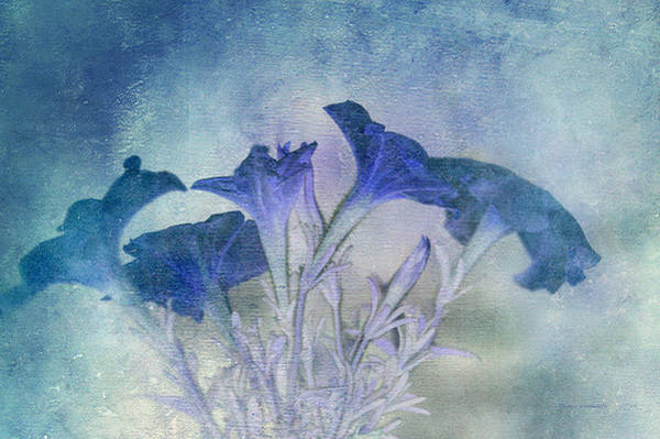 Doona Mixed Media - Floral Blue Textured by Thomas Woolworth