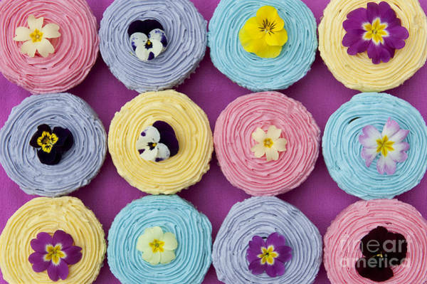 Fairy Cake Wall Art - Photograph - Floral Cupcakes by Tim Gainey