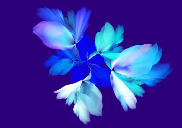 Wall Art - Digital Art - Floral Fantasy 012815 by David Lane