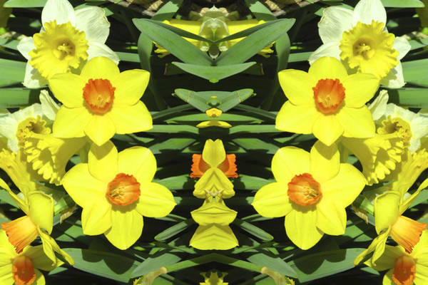 Yellow Trumpet Digital Art - Floral Images 32 by Michael Anthony