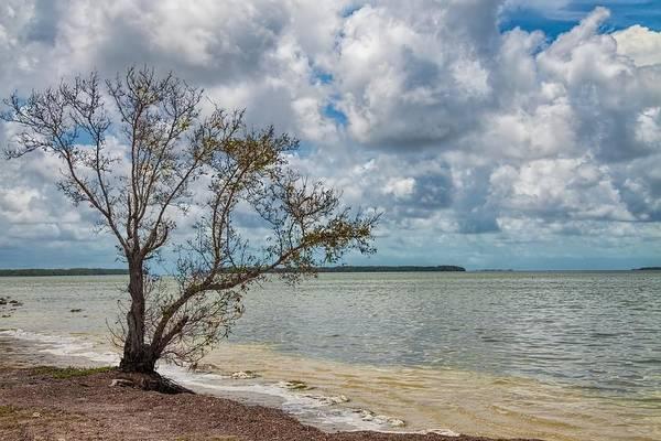 Photograph - Florida Bay 6961 by Rudy Umans