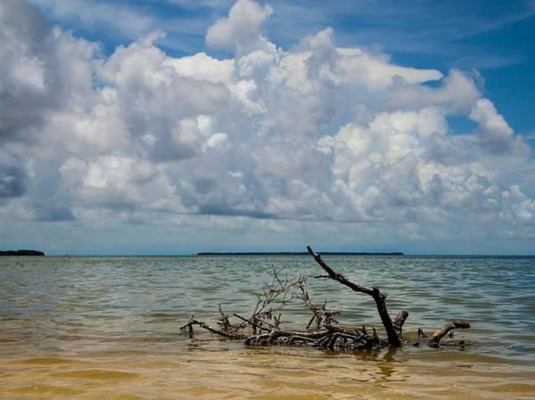 Photograph - Florida Bay 6965 by Rudy Umans