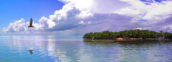 Photograph - Florida Bay Island Filtered by Duane McCullough