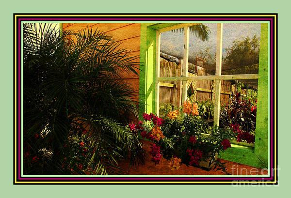 Photograph - Florida Colors 2 by Susanne Van Hulst