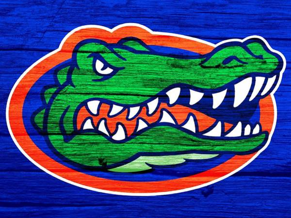 Gator Wall Art - Digital Art - Florida Gators Barn Door by Dan Sproul