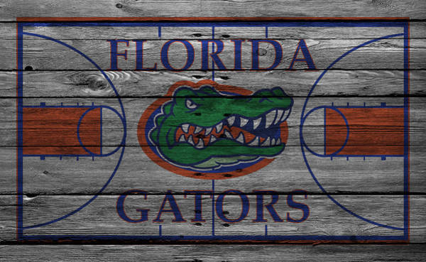 Gator Wall Art - Photograph - Florida Gators by Joe Hamilton