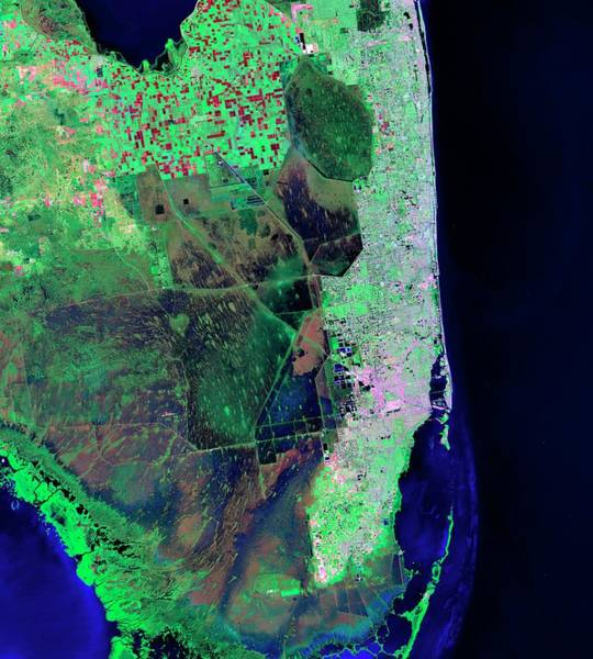 Everglades Photograph - Florida by Nasa/matt Radcliff/usgs Earth Explorer