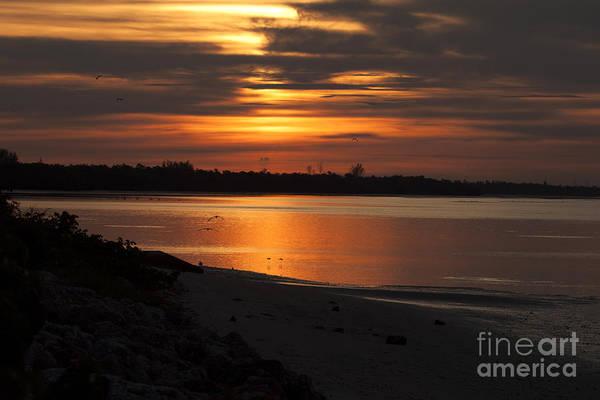 Photograph - Florida Sunrise by Meg Rousher