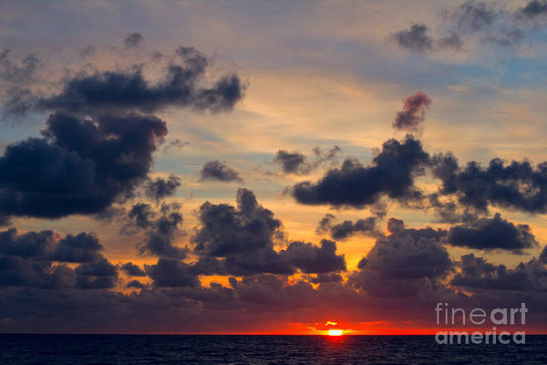 Photograph - Florida Sunset by Les Palenik