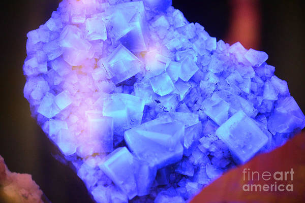 Blacklight Photograph - Flourescent Blue Fluorite Crystals Under Black Light by Shawn O'Brien