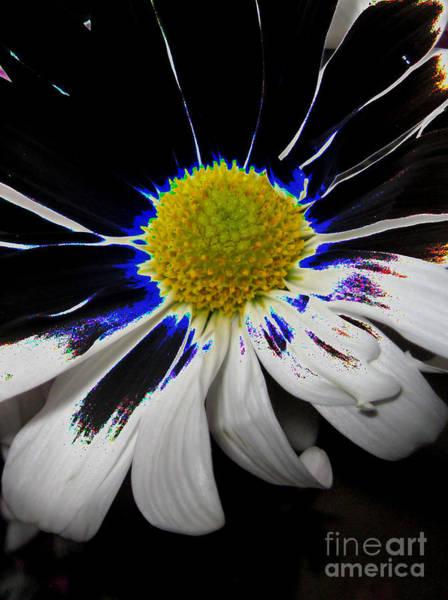 Digital Art - Art. White-black-yellow Flower 2c10  by Oksana Semenchenko