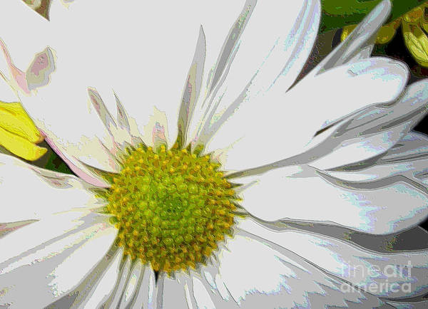 Digital Art - Daisy White-yellow by Oksana Semenchenko