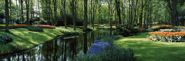 Keukenhof Photograph - Flower Beds And Trees In Keukenhof by Panoramic Images