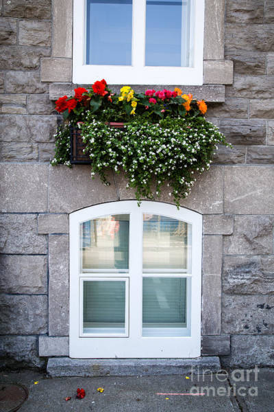 Quebec City Photograph - Flower Box Old Quebec City by Edward Fielding