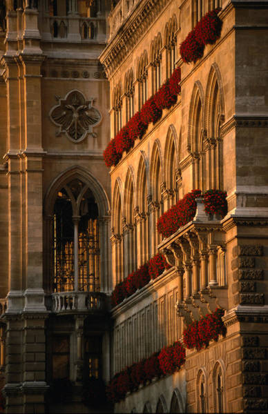 Vienna Photograph - Flower Boxes On The Vienna City Hall by Martin Moos