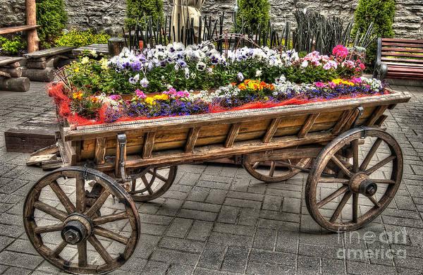 Digital Art - Flower Cart by Mauro Celotti