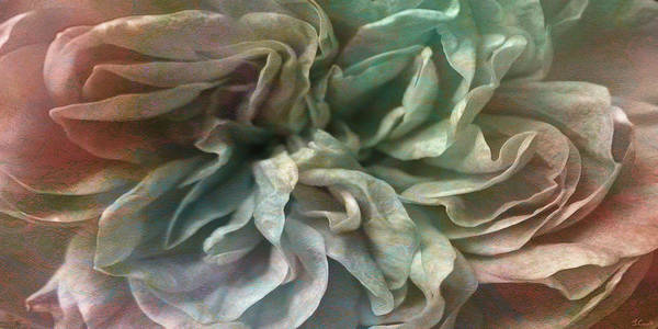 Digital Art - Flower Dance - Abstract Art by Jaison Cianelli