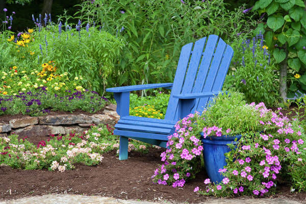 Annual Photograph - Flower Garden With Blue Adirondack by Richard and Susan Day