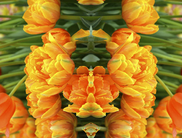 Yellow Trumpet Digital Art - Flower Images 34 by Michael Anthony