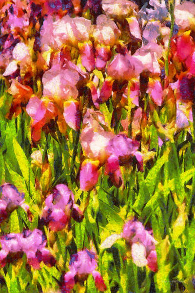 Photograph - Flower - Iris - A Passion For Purple by Mike Savad
