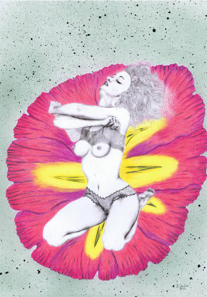 Sexuality Mixed Media - Flower. by Kenneth Clarke