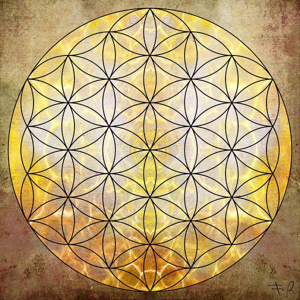 Divine Digital Art - Flower Of Life Gold by Filippo B
