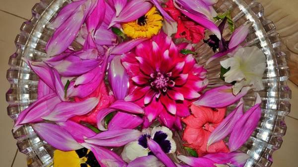 Bemis Photograph - Flower Offerings - Jabalpur India by Kim Bemis