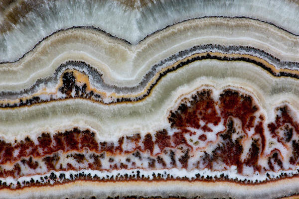 Mineral Wall Art - Photograph - Flower Onyx, Close-up Of Pattern by Darrell Gulin