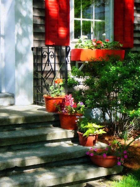 Photograph - Flower Pots And Red Shutters by Susan Savad