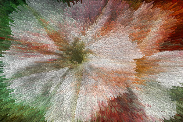 Digital Art - Flower Power by Deborah Benoit