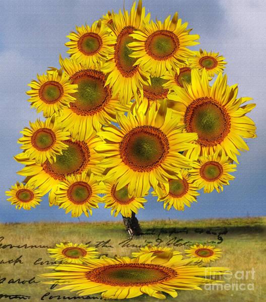 Digital Art - Flower Power - Sun Flower Tree by Daliana Pacuraru